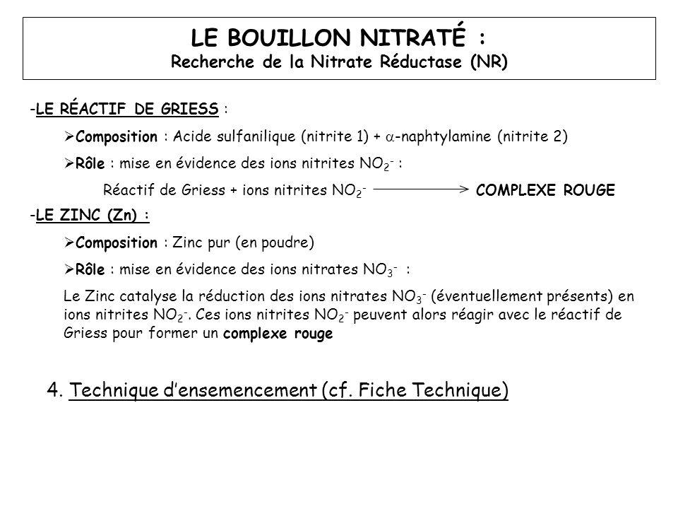 Recherche de la Nitrate Réductase (NR)