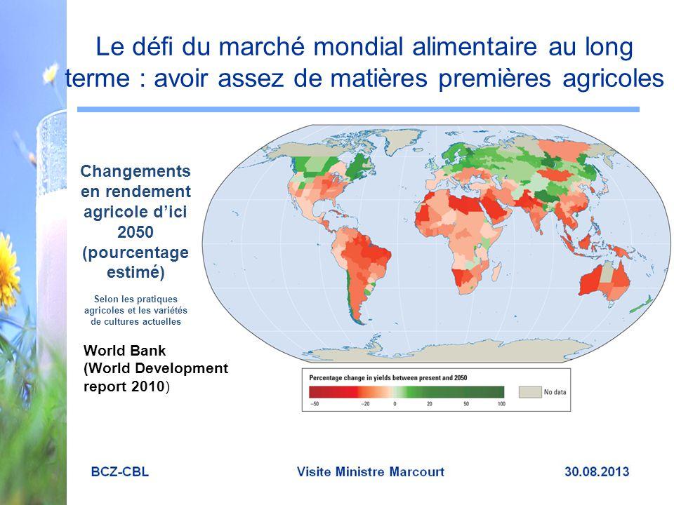 Le défi du marché mondial alimentaire au long terme : avoir assez de matières premières agricoles