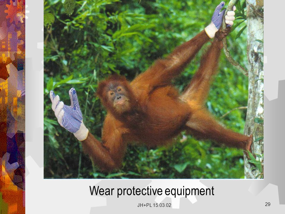 Wear protective equipment