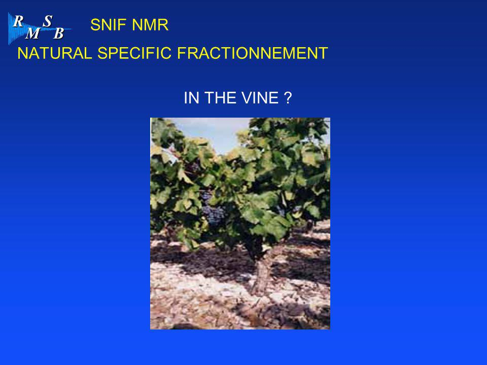 SNIF NMR NATURAL SPECIFIC FRACTIONNEMENT IN THE VINE