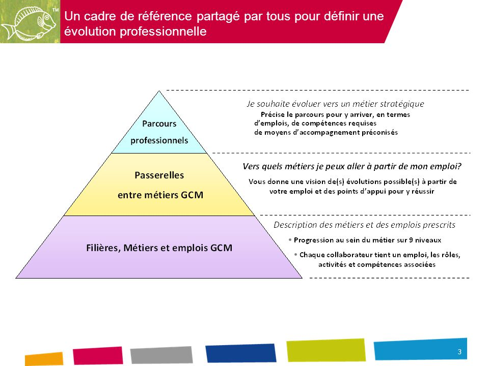 Un cadre de référence partagé par tous pour définir une évolution professionnelle