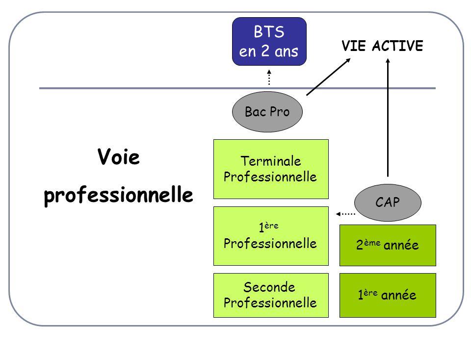 Voie professionnelle BTS en 2 ans VIE ACTIVE Bac Pro Terminale