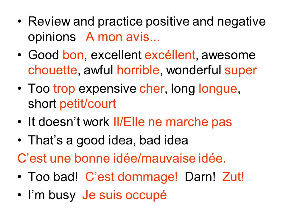 Review and practice positive and negative opinions A mon avis...