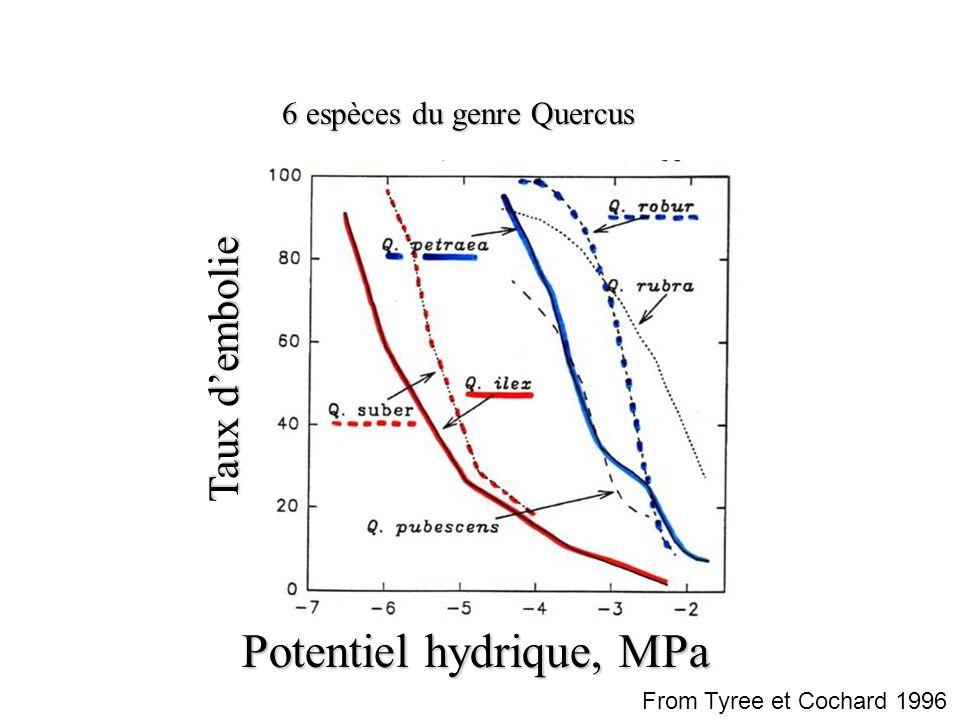 Potentiel hydrique, MPa
