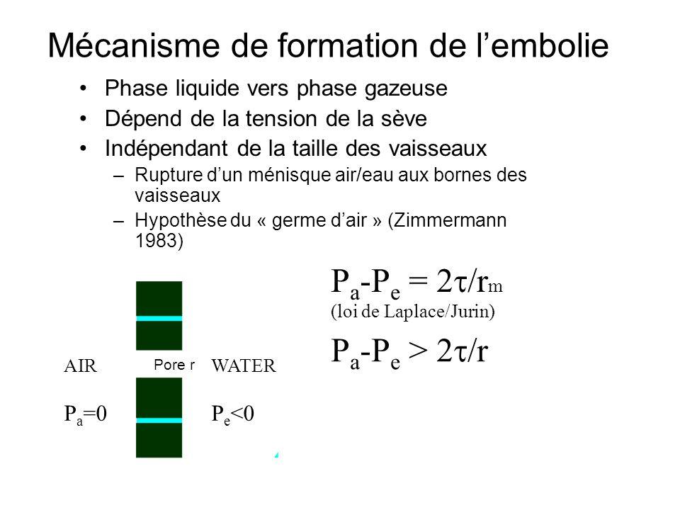 Mécanisme de formation de l'embolie
