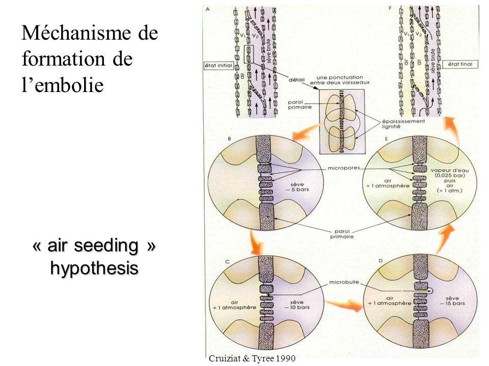 « air seeding » hypothesis