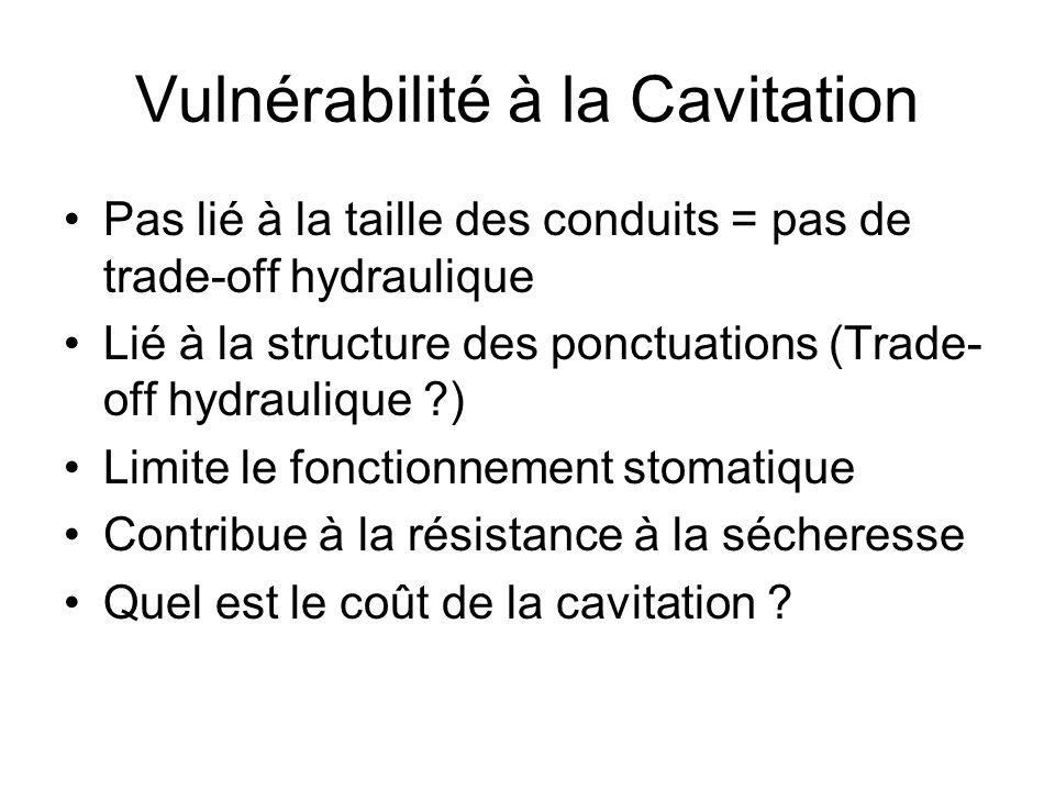 Vulnérabilité à la Cavitation