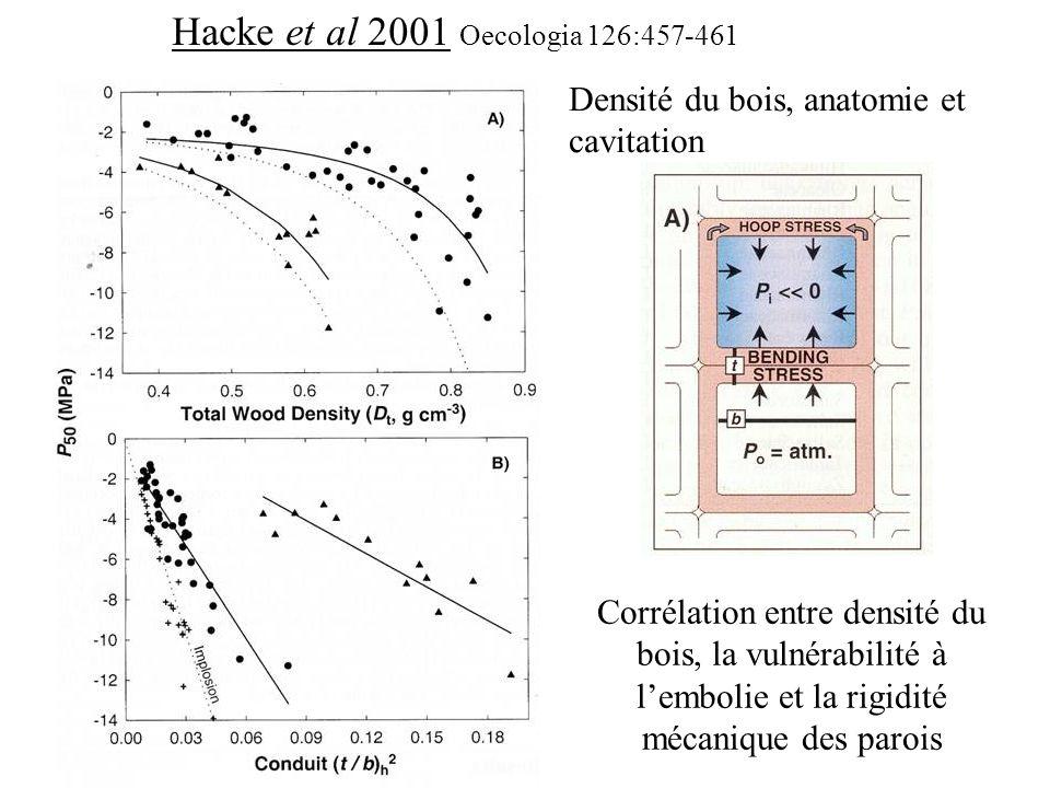 Hacke et al 2001 Oecologia 126:457-461