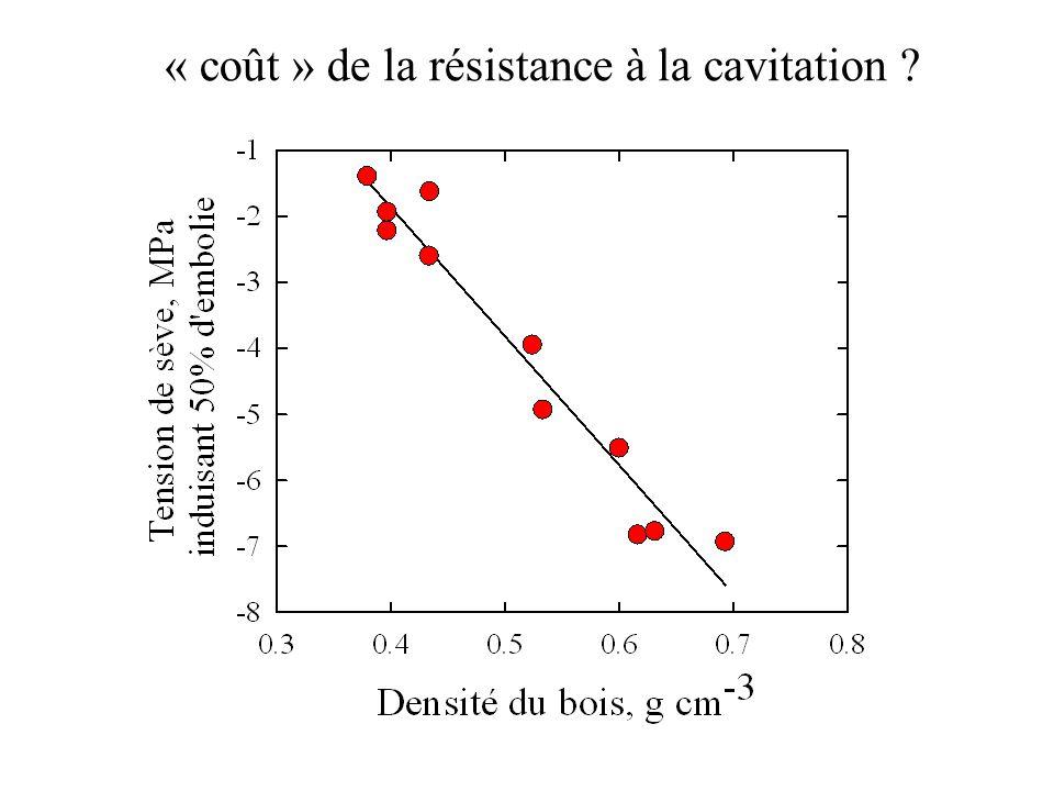 « coût » de la résistance à la cavitation