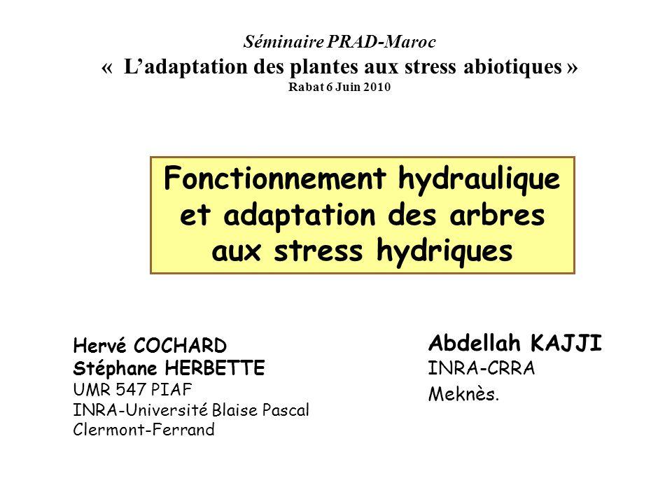 « L'adaptation des plantes aux stress abiotiques »
