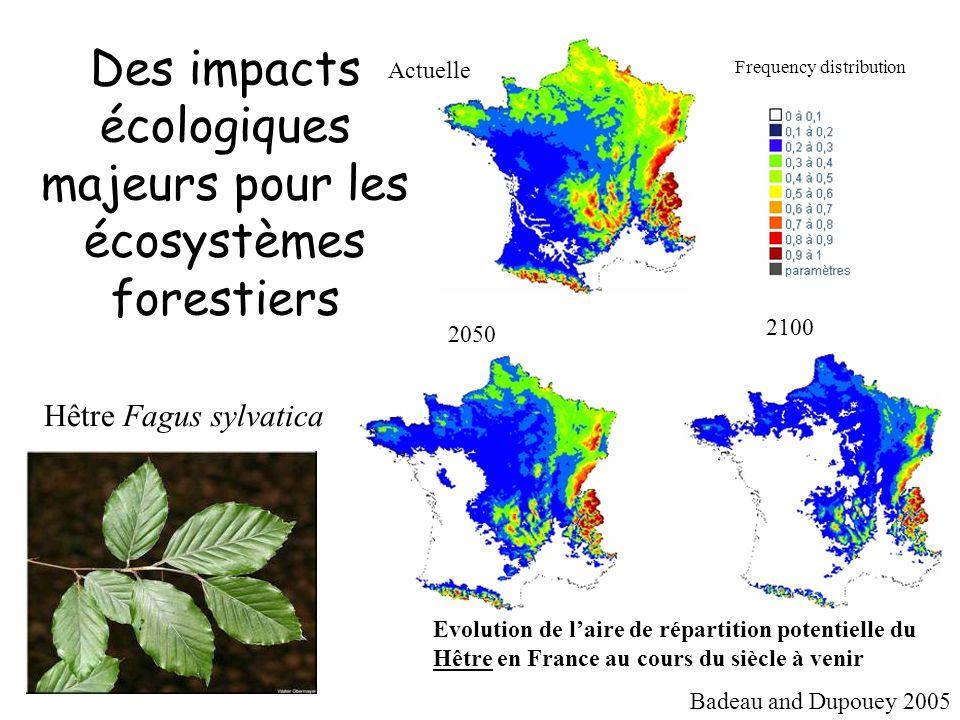 Des impacts écologiques majeurs pour les écosystèmes forestiers