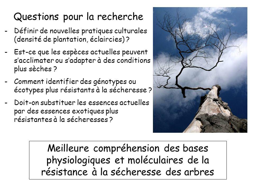 Questions pour la recherche