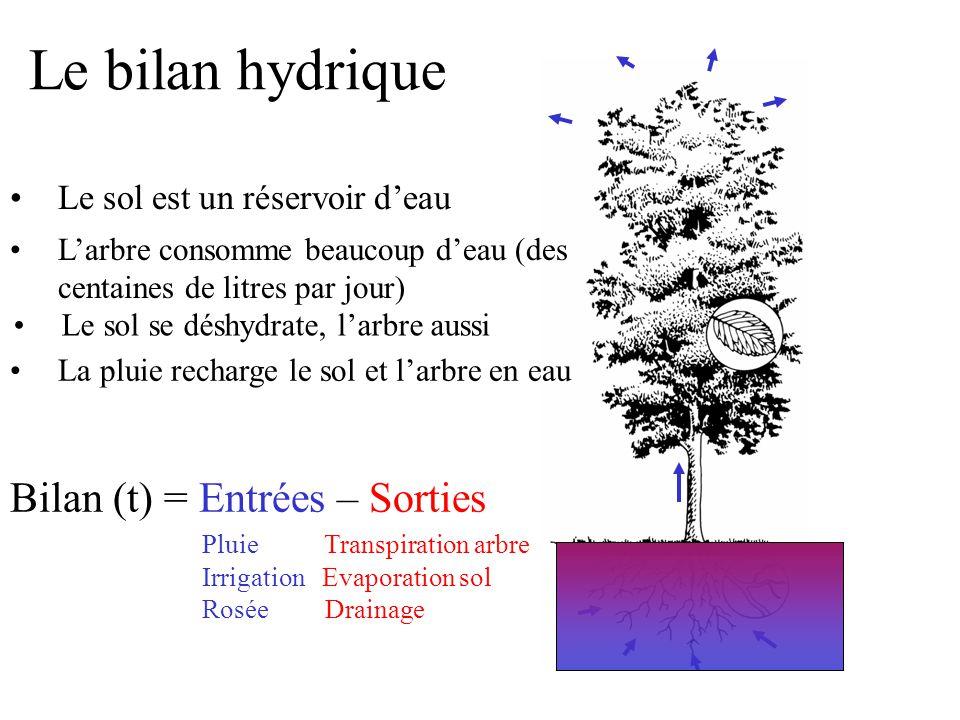 Le bilan hydrique Bilan (t) = Entrées – Sorties