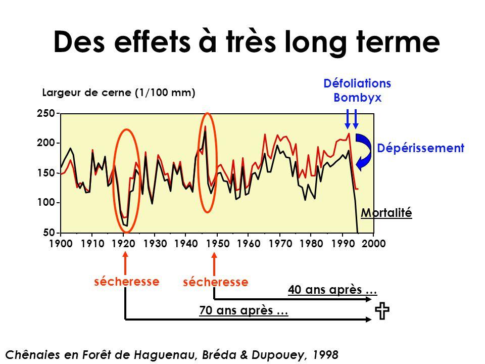 Des effets à très long terme