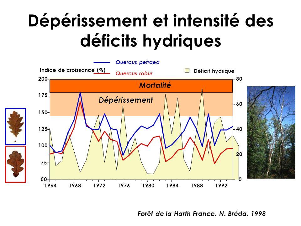 Dépérissement et intensité des déficits hydriques