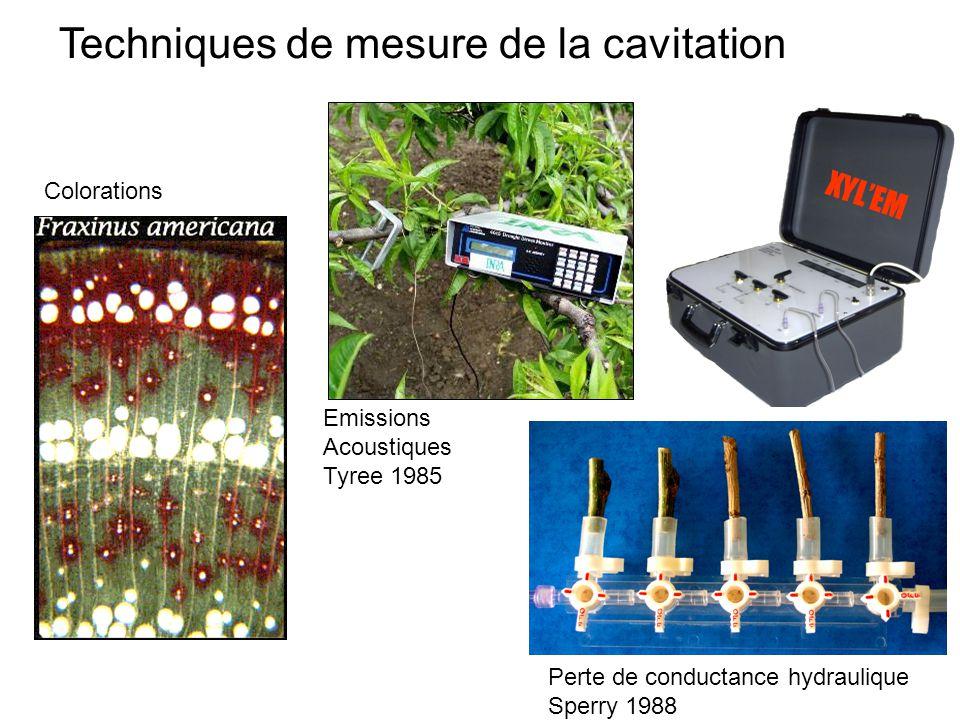 Techniques de mesure de la cavitation