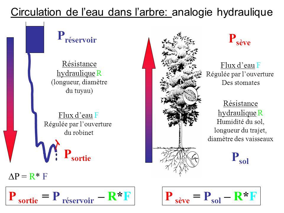 P sortie = P réservoir – R*F P sève = Psol – R*F