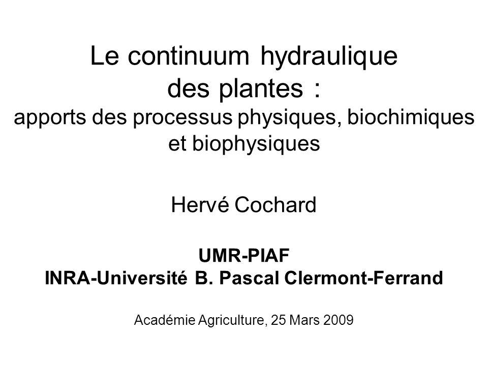 Le continuum hydraulique des plantes : apports des processus physiques, biochimiques et biophysiques Hervé Cochard UMR-PIAF INRA-Université B.