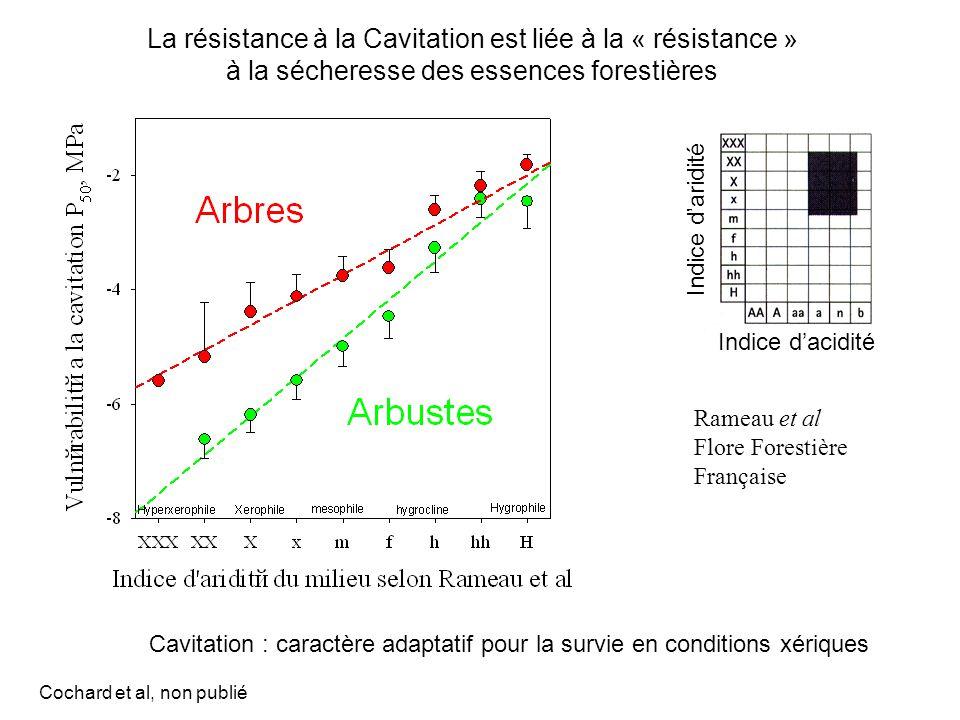 La résistance à la Cavitation est liée à la « résistance »