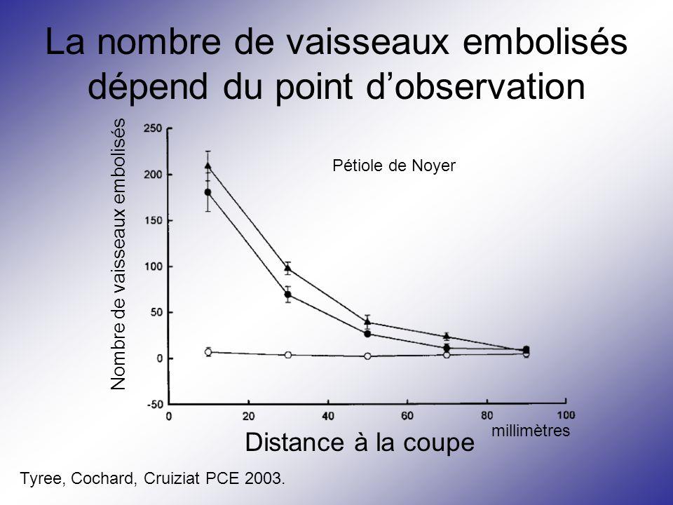La nombre de vaisseaux embolisés dépend du point d'observation