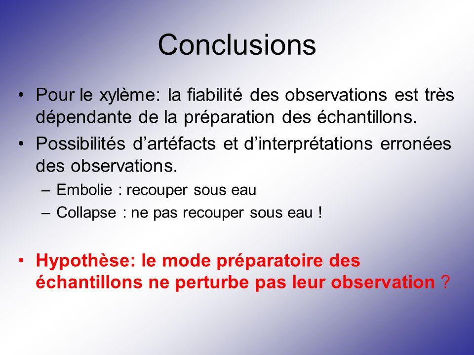 Conclusions Pour le xylème: la fiabilité des observations est très dépendante de la préparation des échantillons.