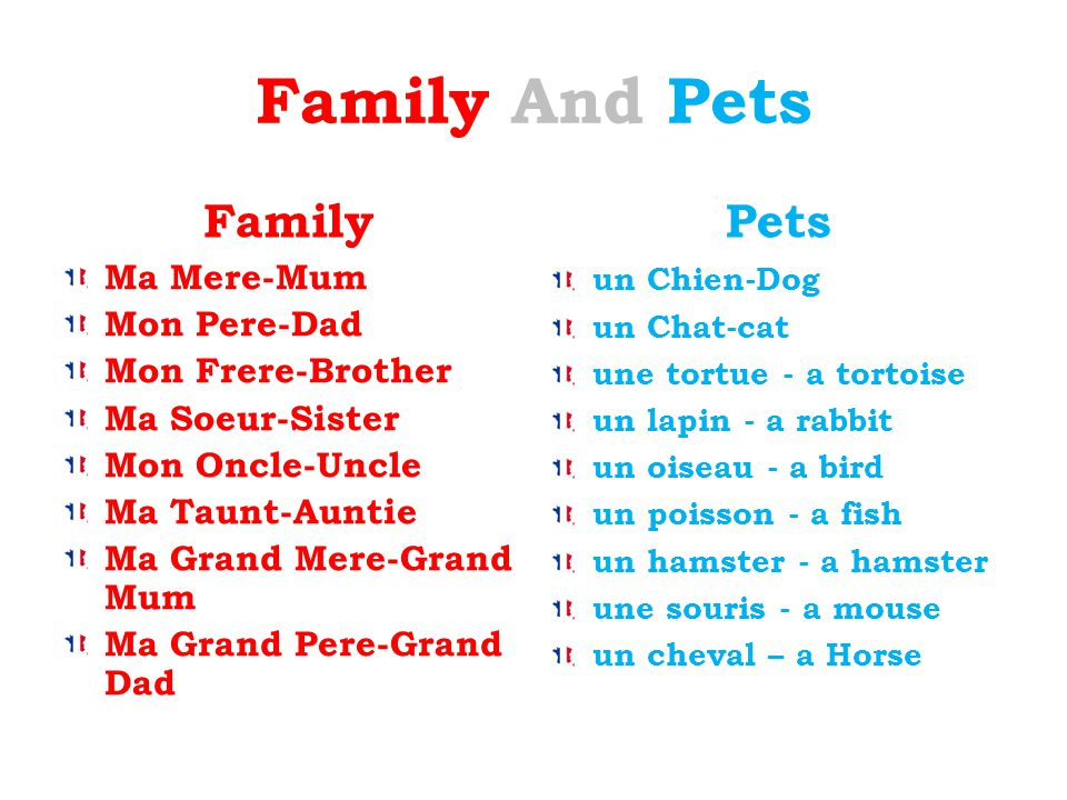 Family And Pets Family Pets Ma Mere-Mum Mon Pere-Dad Mon Frere-Brother