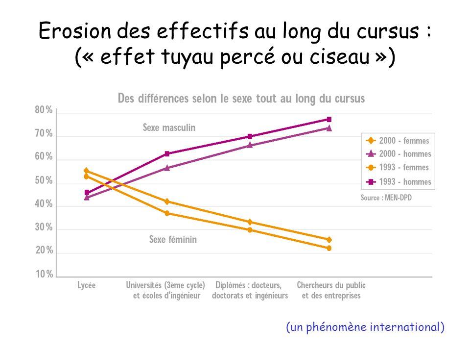 Erosion des effectifs au long du cursus : (« effet tuyau percé ou ciseau »)