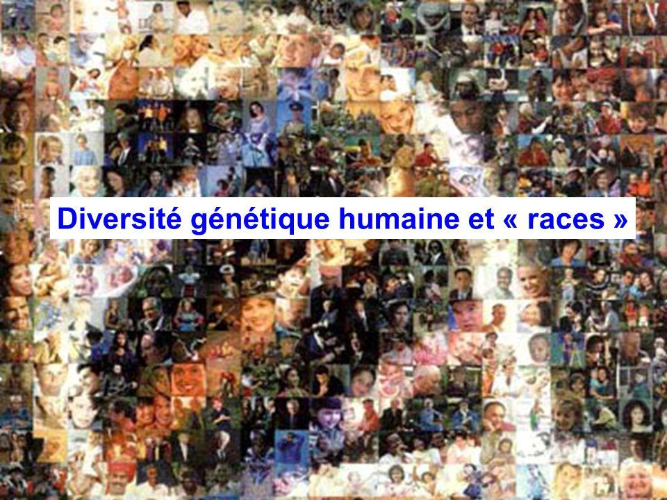 Diversité génétique humaine et « races »