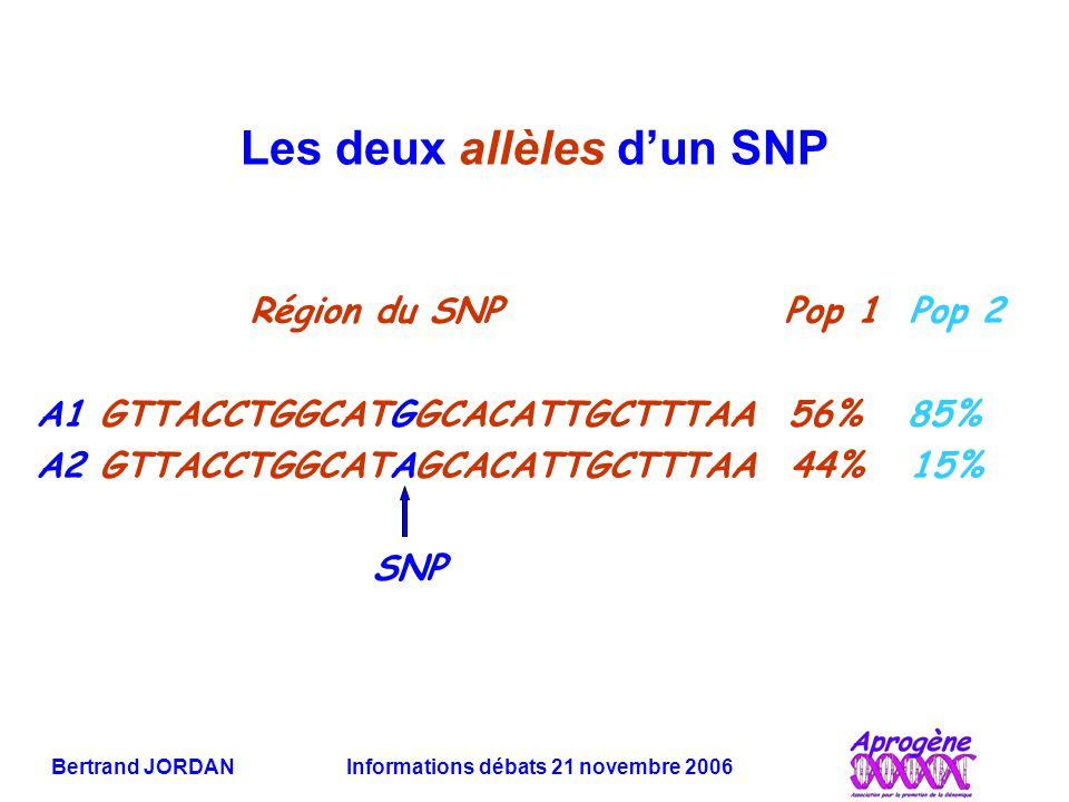Les deux allèles d'un SNP