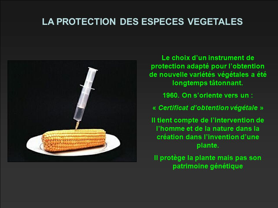 LA PROTECTION DES ESPECES VEGETALES