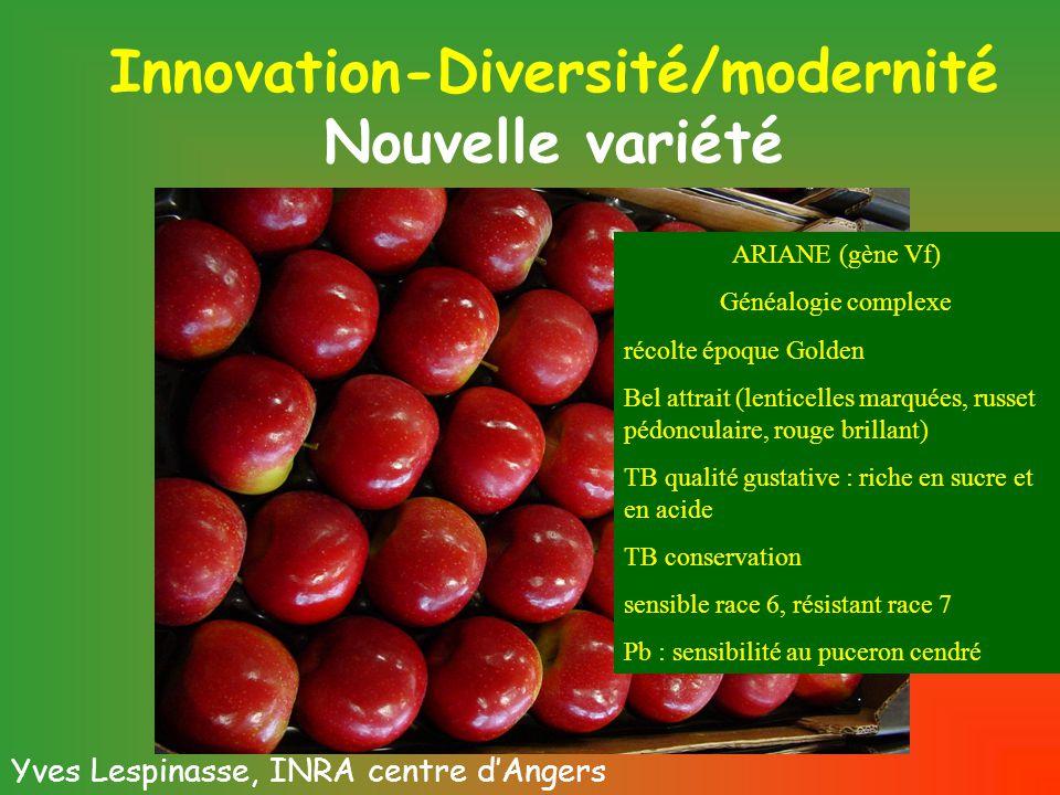 Innovation-Diversité/modernité Nouvelle variété