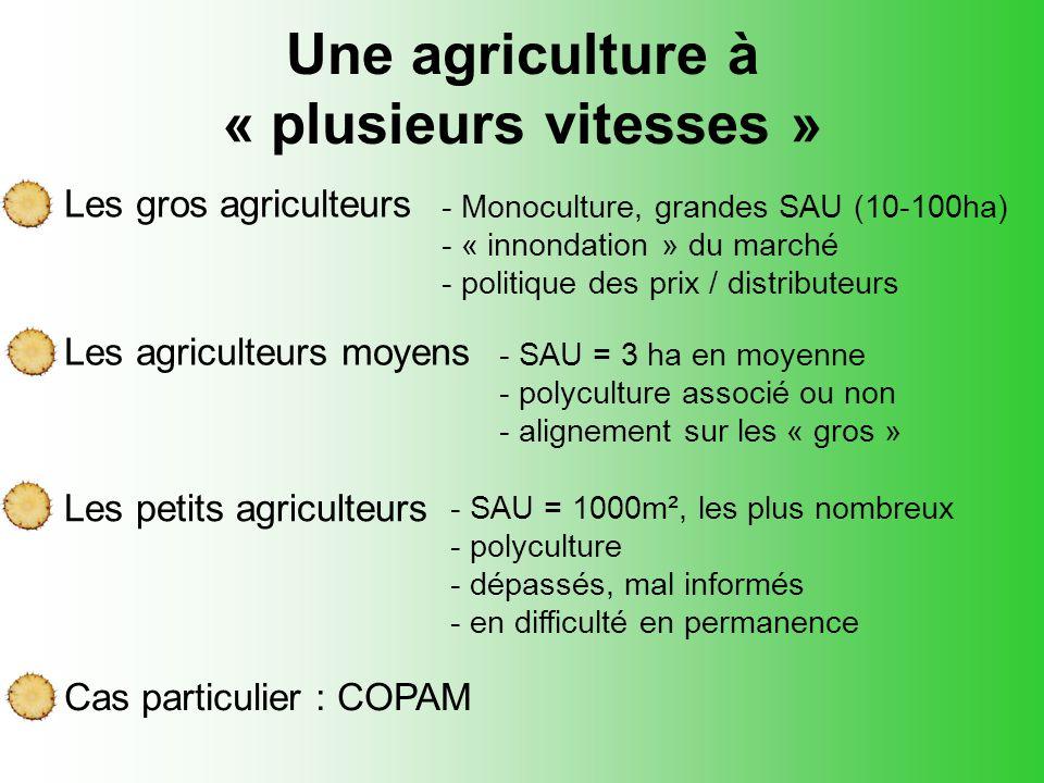 Une agriculture à « plusieurs vitesses »