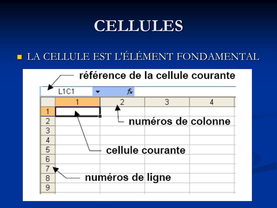 CELLULES LA CELLULE EST L ÉLÉMENT FONDAMENTAL