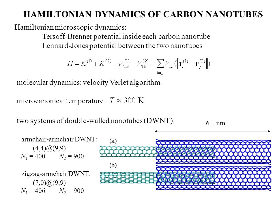 HAMILTONIAN DYNAMICS OF CARBON NANOTUBES