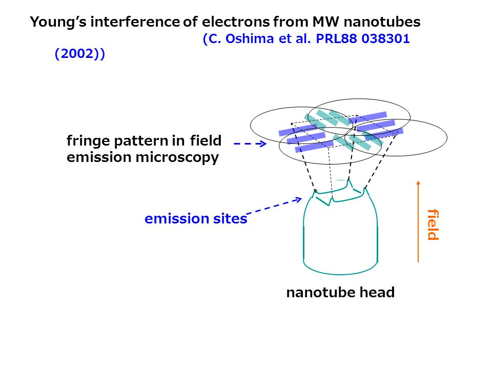 Young's interference of electrons from MW nanotubes