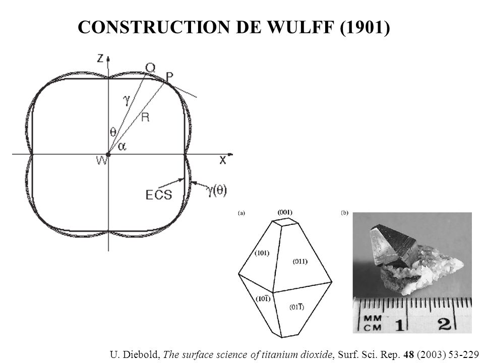 CONSTRUCTION DE WULFF (1901)