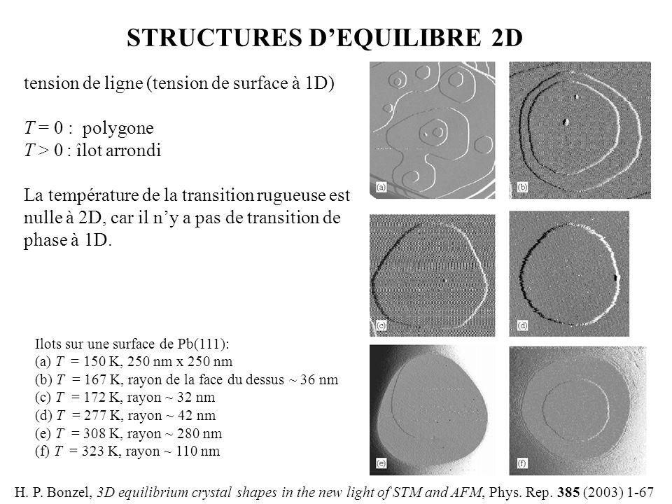 STRUCTURES D'EQUILIBRE 2D