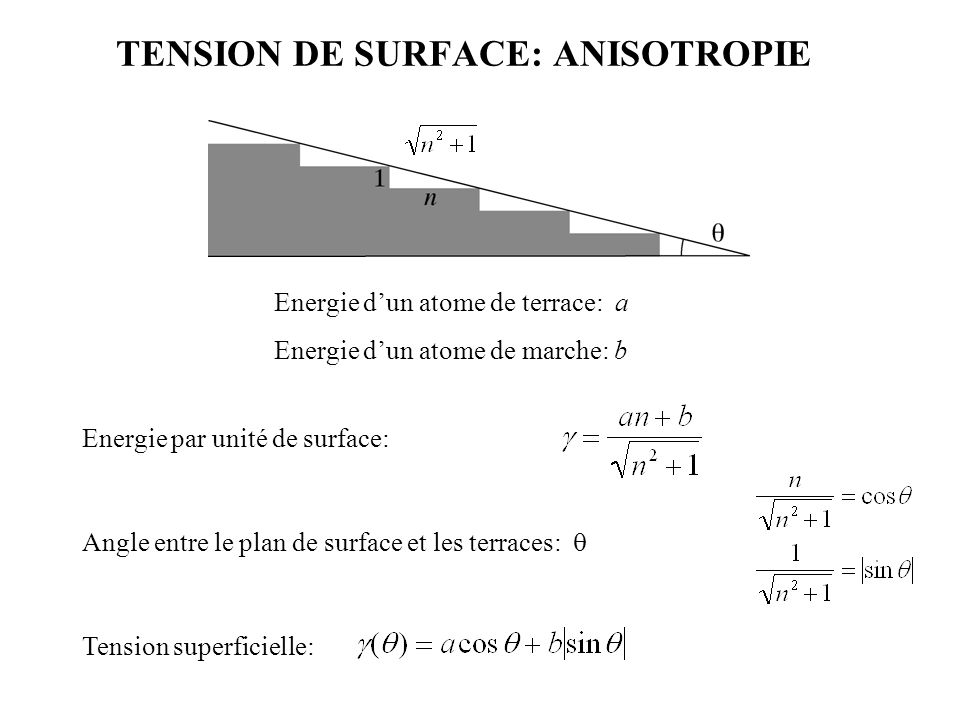 TENSION DE SURFACE: ANISOTROPIE