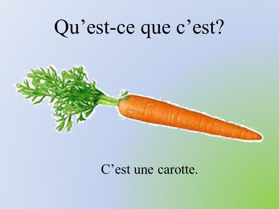 Qu'est-ce que c'est C'est une carotte.