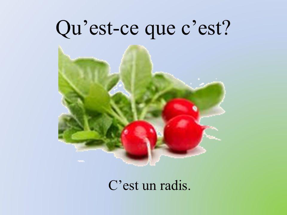 Qu'est-ce que c'est C'est un radis.