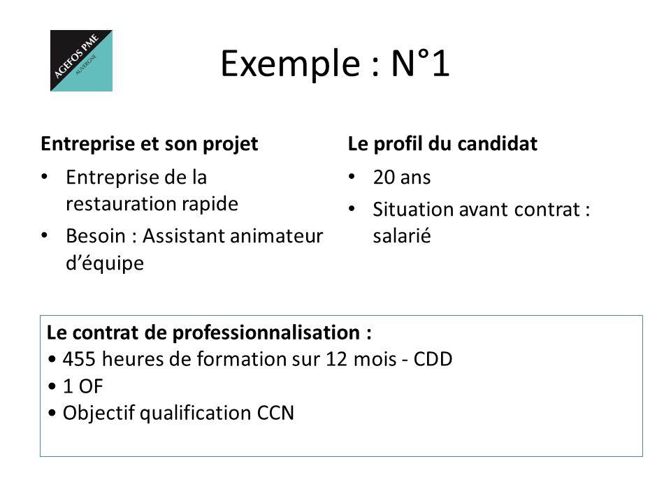 Exemple : N°1 Entreprise et son projet Le profil du candidat