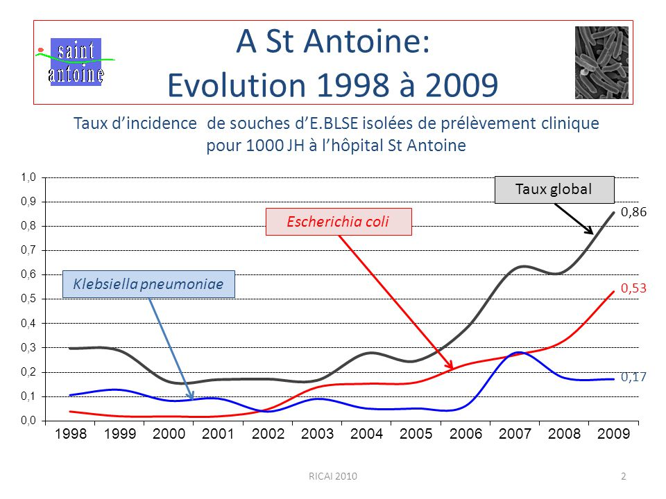 A St Antoine: Evolution 1998 à 2009