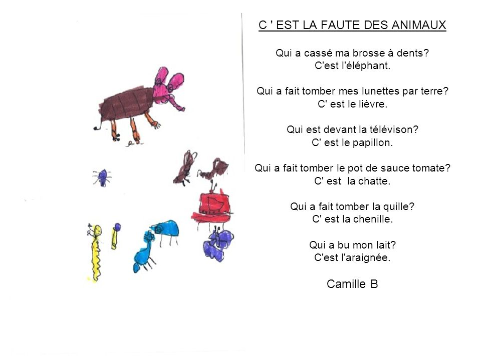 C EST LA FAUTE DES ANIMAUX