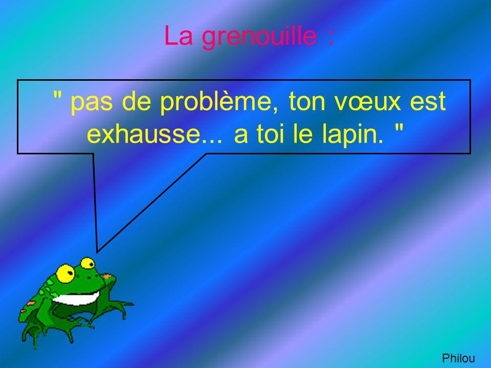 La grenouille : pas de problème, ton vœux est exhausse
