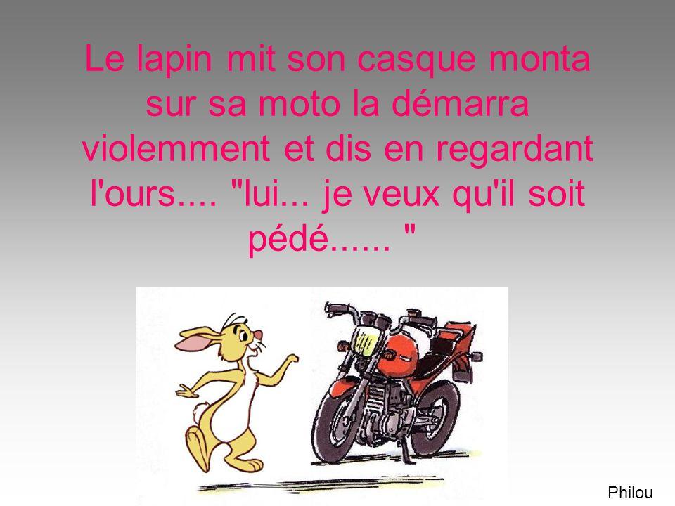 Le lapin mit son casque monta sur sa moto la démarra violemment et dis en regardant l ours.... lui... je veux qu il soit pédé......