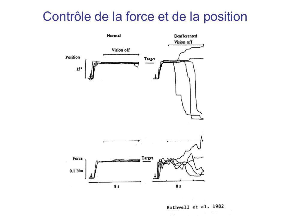 Contrôle de la force et de la position