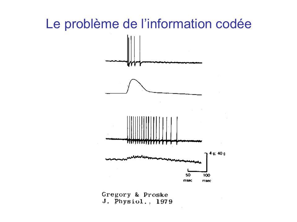 Le problème de l'information codée