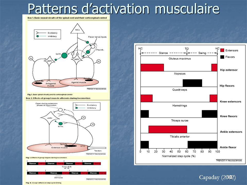 Patterns d'activation musculaire