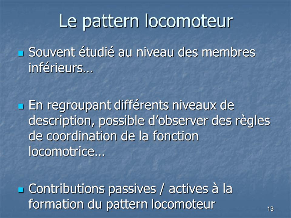 Le pattern locomoteur Souvent étudié au niveau des membres inférieurs…