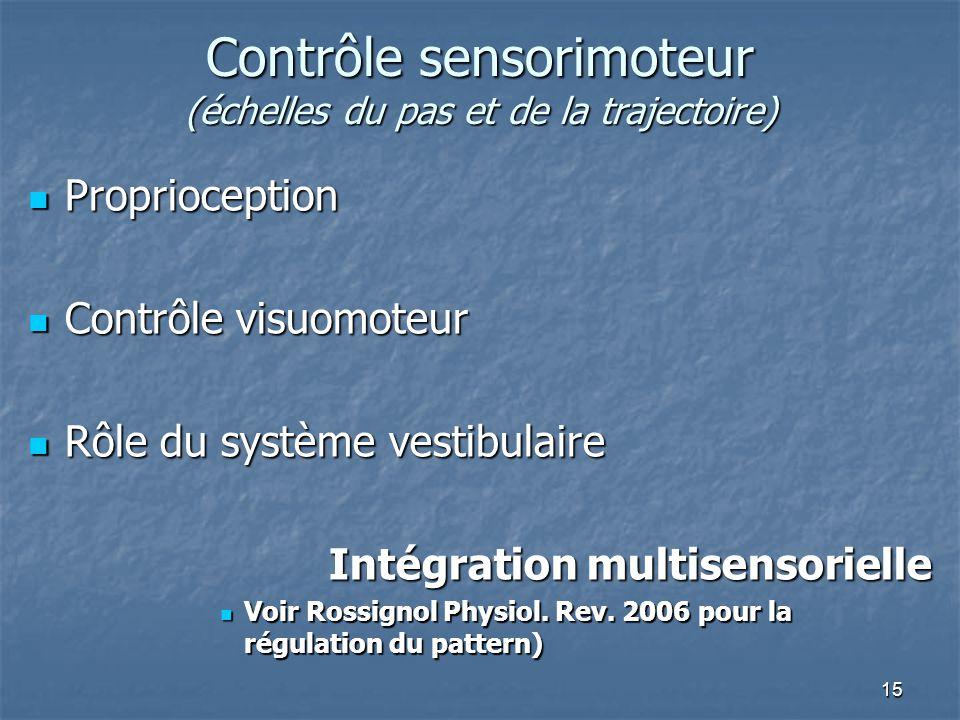 Contrôle sensorimoteur (échelles du pas et de la trajectoire)